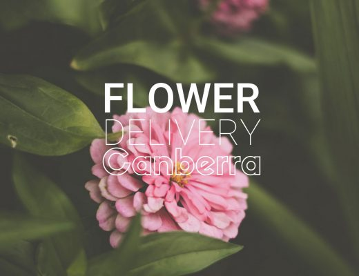 5 Best Options for Flower Delivery in Canberra