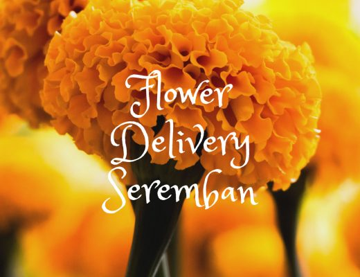 5 Best Options for Flower Delivery in Seremban