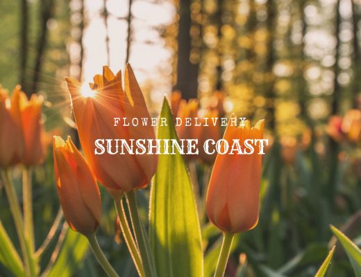 5 Best Options for Flower Delivery in Sunshine Coast