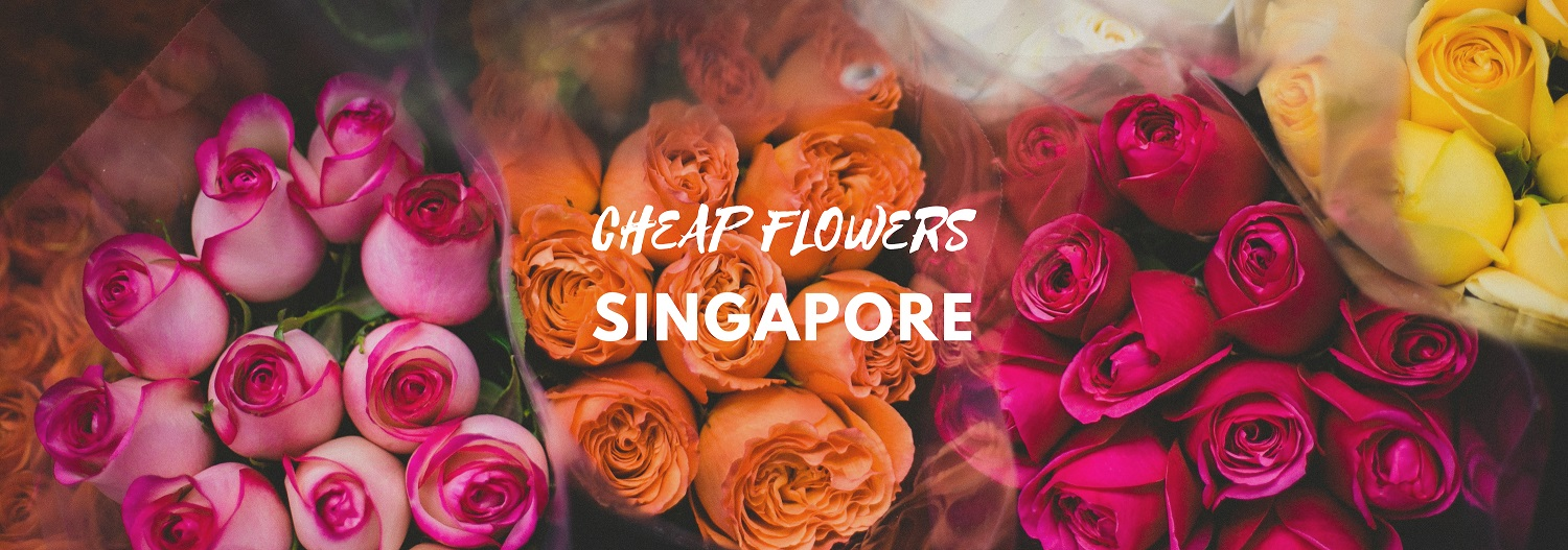 The 8 Best Options for Cheap Flowers in Singapore starting at just $11