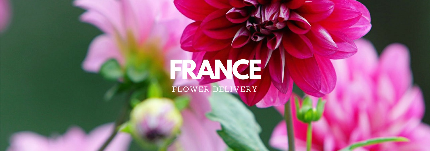 The 7 Best Options for Flower Delivery in France
