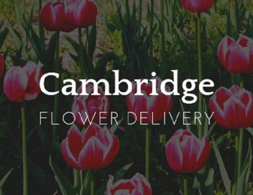 The 8 Best Options for Flower Delivery in Cambridge