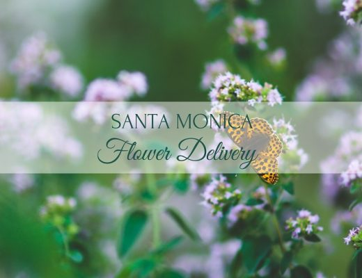 6 Best Options for Flower Delivery in Santa Monica