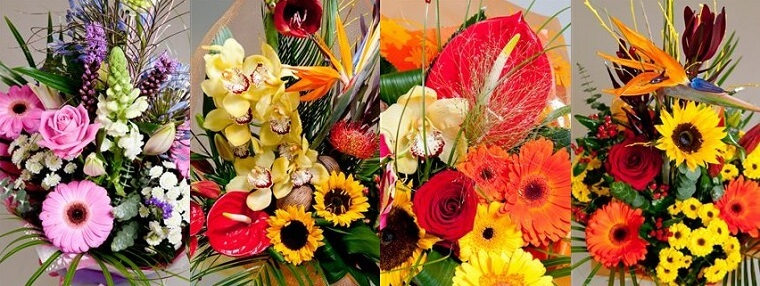 Best Flower Delivery Cork | Fox Flowers