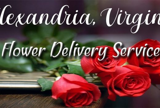 Best Flower Delivery Alexandria, Virginia-\