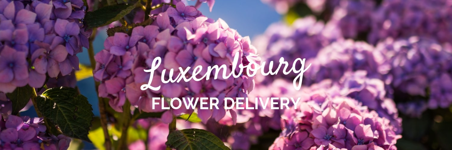 The 9 Best Options for Flower Delivery in Luxembourg