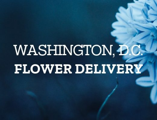 The 12 Best Options for Flower Delivery in Washington, D.C.