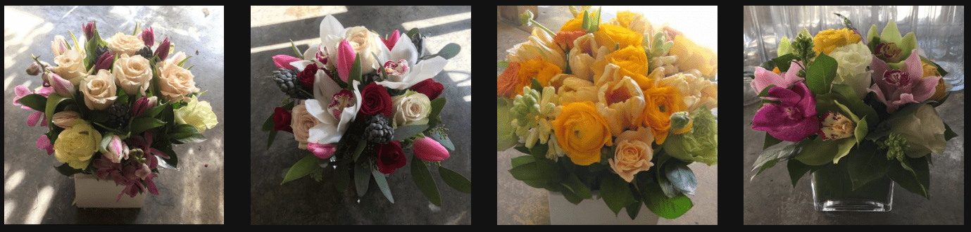 The Conservatory Florist's Flowers
