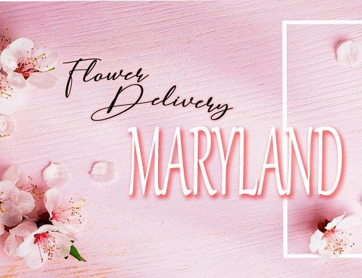 Best Flower Delivery Maryland