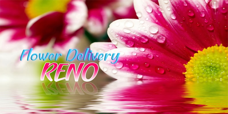 The 8 Best Options for Flower Delivery in Reno