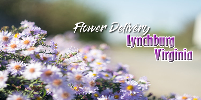 The 8 Best Options for Flower Delivery in Lynchburg Virginia
