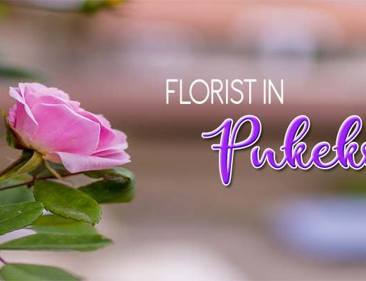 6 Best Options for Florists in Pukekohe