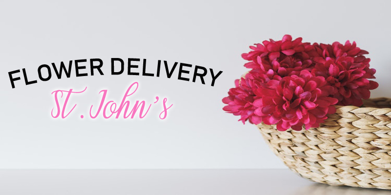 The 8 Best Options for Flower Delivery in St John's