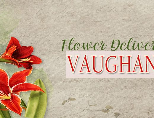 The 16 Best Options for Flower Delivery in Vaughan