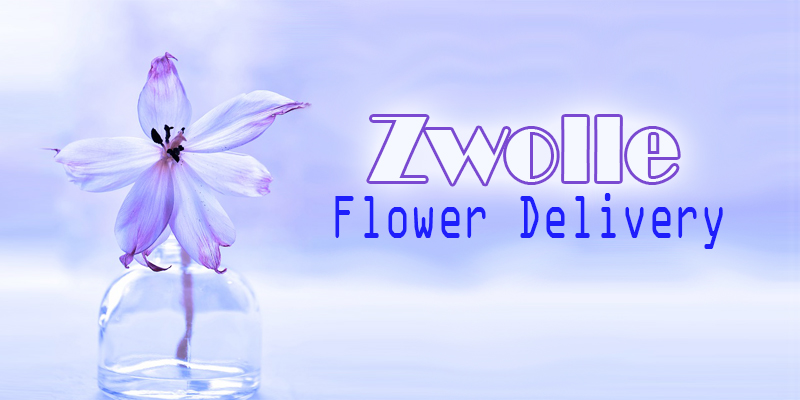 Best Flower Delivery Zwolle