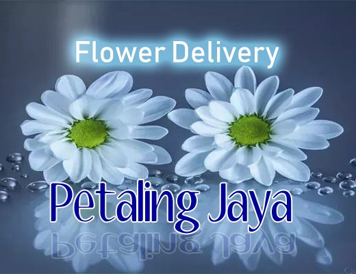 The 6 Best Options for Flower Delivery in Petaling Jaya