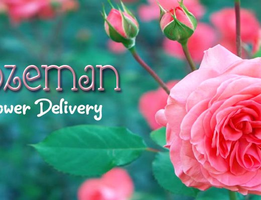 6 Best Options for Flower Delivery in Bozeman, Montana