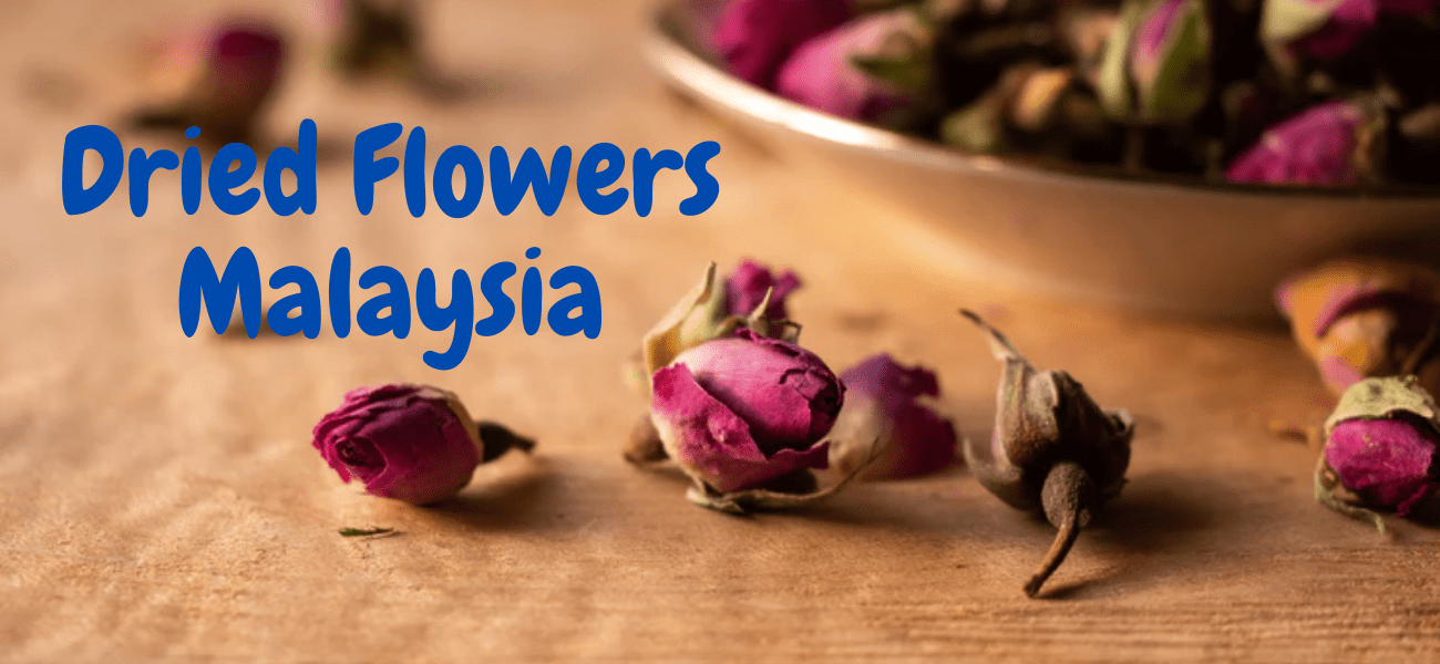 The 6 Best Options for Dried Flowers in Malaysia